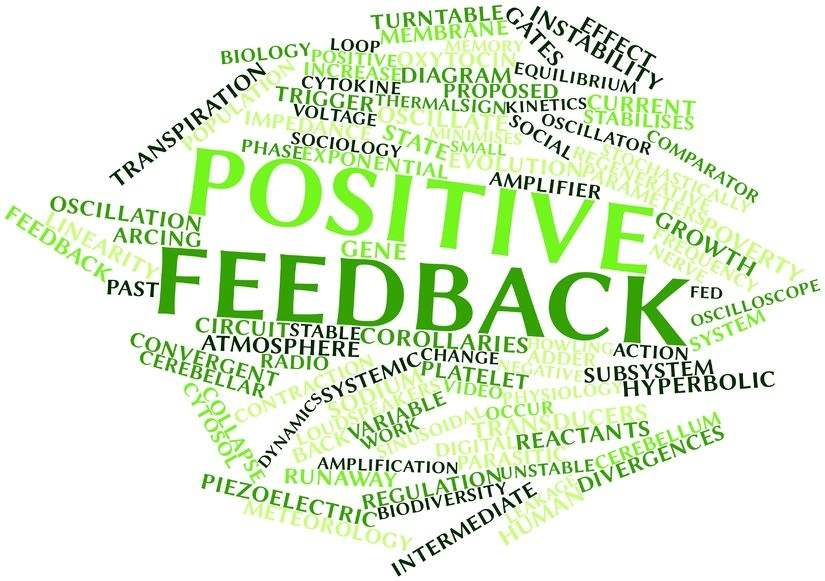 Positive Feedback Loop - Gracilis Health